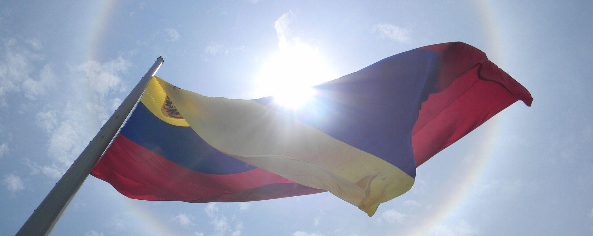 Bandera de Venezuela - Sputnik Mundo, 1920, 12.01.2021