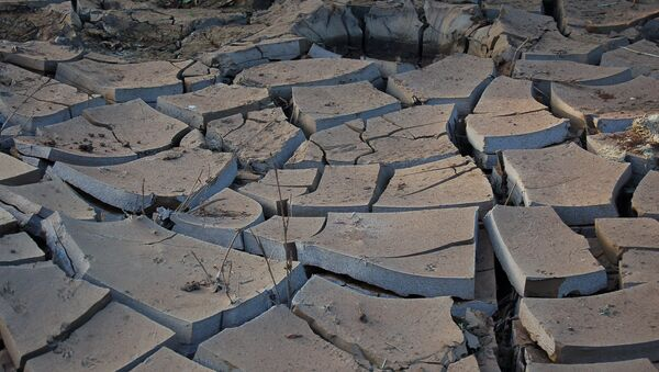 Sequía, impacto de El Niño - Sputnik Mundo