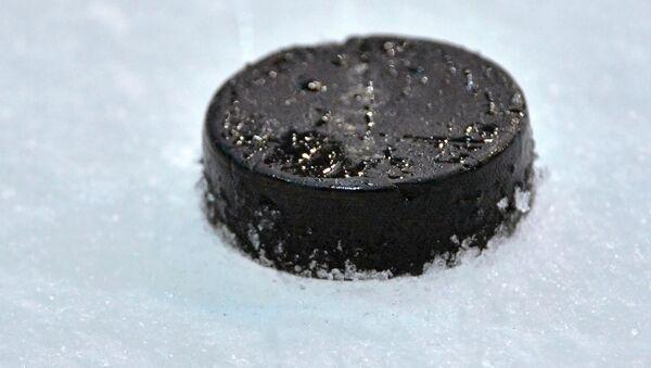 Dos entrenadores rusos de hockey sobre hielo, multados y descalificados por pelea - Sputnik Mundo