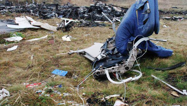 Restos del Boeing 777 derribado en el este de Ucrania (archivo) - Sputnik Mundo