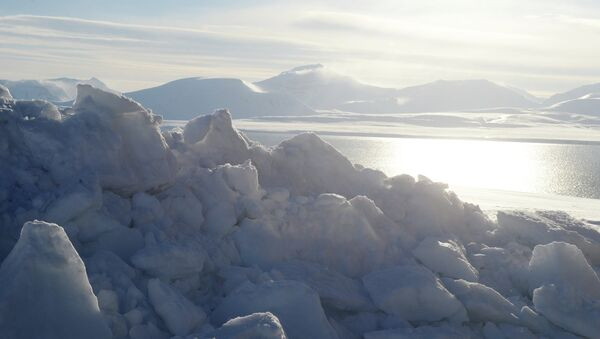 El Ártico - Sputnik Mundo