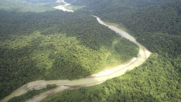 Bosques de Amazonía (archivo) - Sputnik Mundo