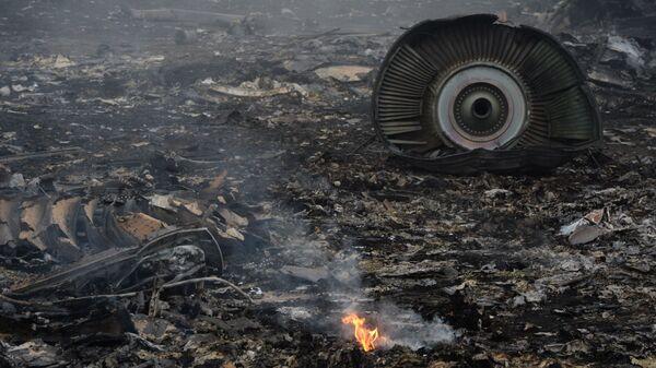 El lugar del siniestro del MH17 en Ucrania - Sputnik Mundo