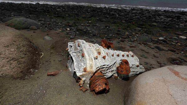 Escombro arrastrado hasta la playa de un isla en La Reunión - Sputnik Mundo