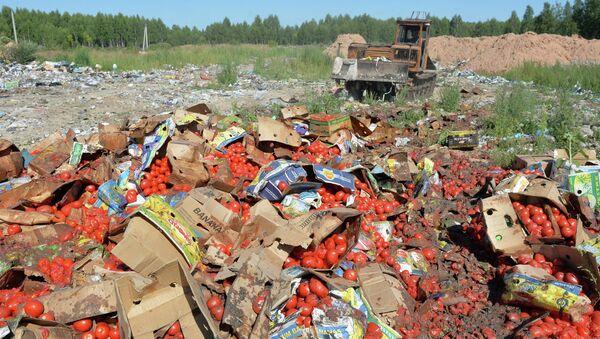 Rusia destruye en un día 290 toneladas de alimentos sancionados - Sputnik Mundo