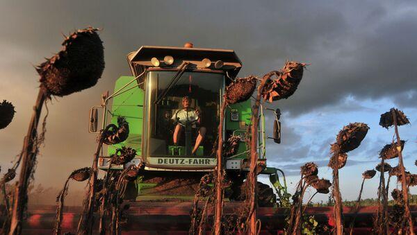 Agricultor recoge la cosecha en la provincia de Buenos Aires - Sputnik Mundo