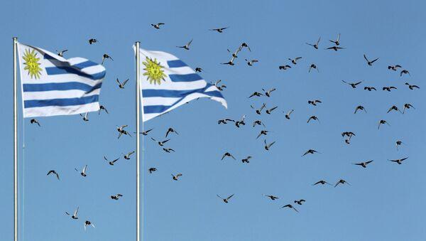 Las banderas de Uruguay - Sputnik Mundo