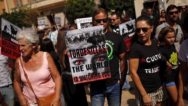 Manifestaciones de protesta contra la fiesta del Toro de la Vega en la que se mata un toro con lanzas - Sputnik Mundo