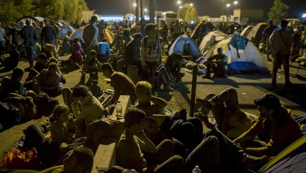 Migrantes en la frontera entre Serbia y Hungría - Sputnik Mundo