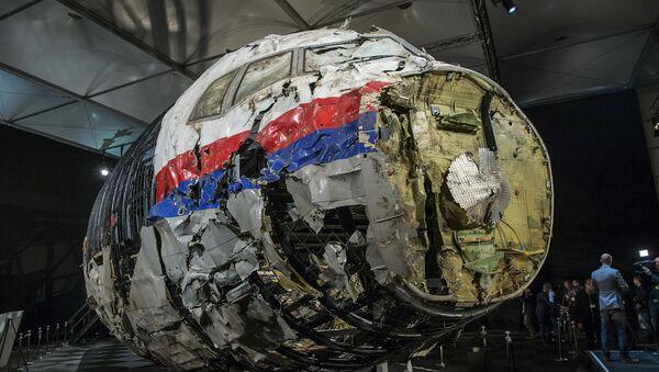 Informe técnico de la catástrofe del MH17 - Sputnik Mundo