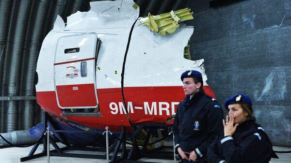 Parte del avión que realizaba el vuelo MH17 de Malaysia Airlines - Sputnik Mundo