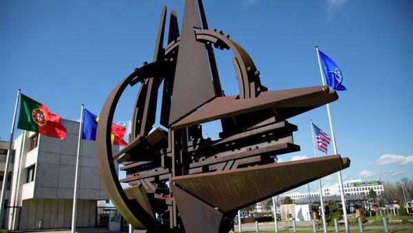 Embajador ruso tacha de propaganda nuevas acusaciones de la OTAN - Sputnik Mundo