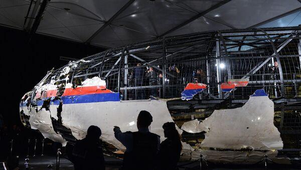 Доклад Совета безопасности Нидерландов по причинам крушения Boeing 777 - Sputnik Mundo