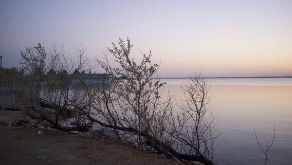 Zatoka, la provincia de Odesa - Sputnik Mundo