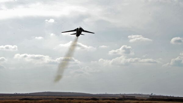 MiG-23 de la Fuerza Aérea siria - Sputnik Mundo