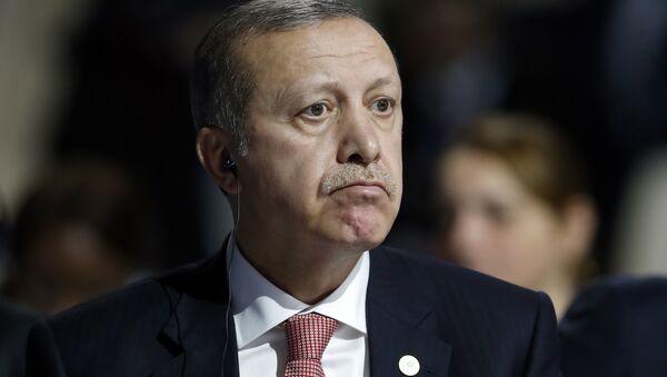 Erdogan: ¿Persona non grata para EEUU? - Sputnik Mundo