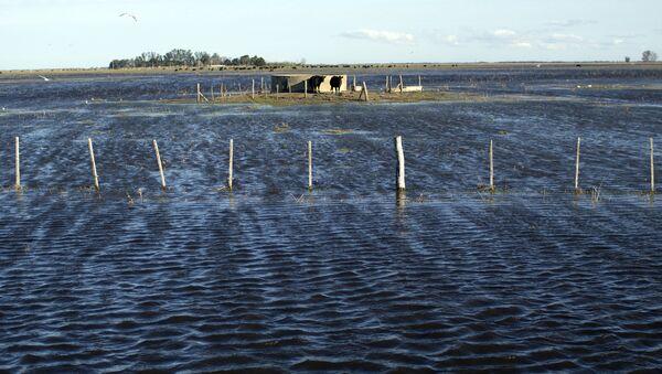 Inundaciones como consecuencias de las lluvias en Argentina en agosto de 2015 - Sputnik Mundo