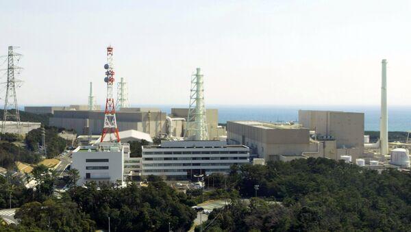 La central electronuclear japonesa de Hamaoka (archivo) - Sputnik Mundo