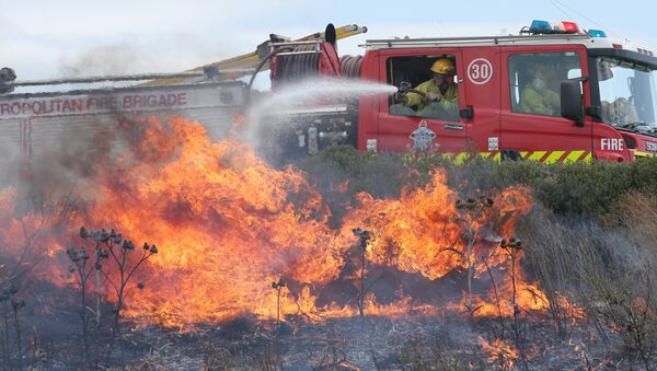 Firefighters attempt to extinguish a fast-moving grass fire in the Epping area of northern Melbourne during heatwave conditions in southeastern Australia - Sputnik Mundo