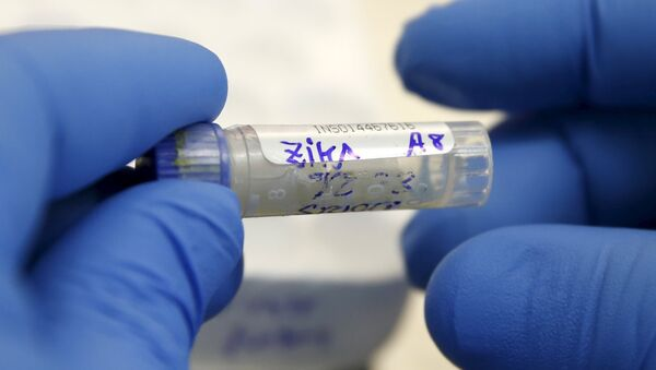 Virus Zika - Sputnik Mundo