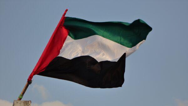 La bandera de Emiratos Árabes Unidos - Sputnik Mundo