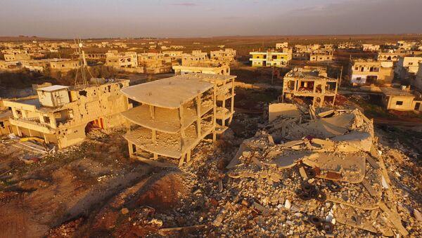 EEUU y Rusia pactan cese del fuego en Siria a partir del 27 de febrero, dice Putin - Sputnik Mundo
