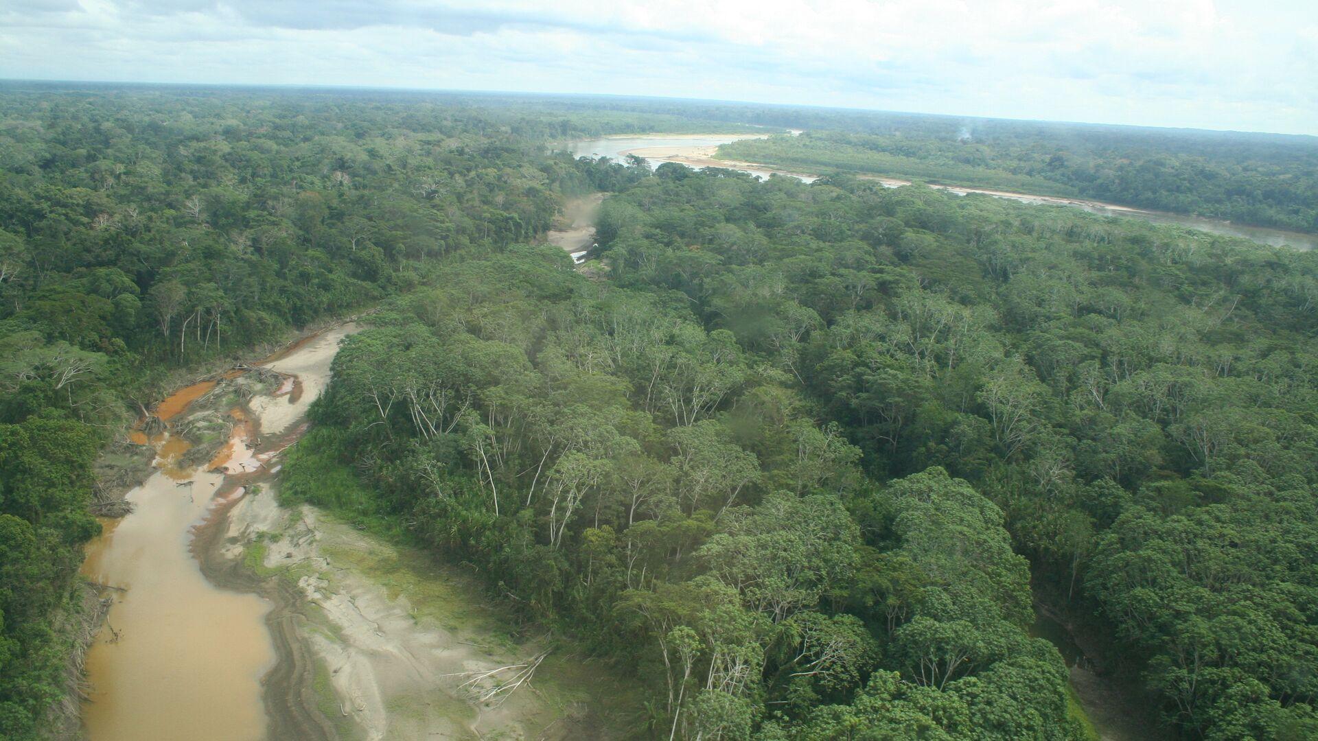 Amazonia, Perú - Sputnik Mundo, 1920, 31.03.2021