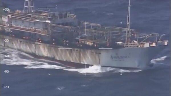 Barco chino pesca ilegalmente en aguas argentinas - Sputnik Mundo