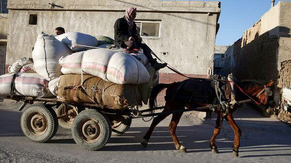 Un habitante de Siria en un carro - Sputnik Mundo