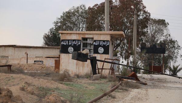 Una de las casas ocupadas por los terroristas en la ciudad de Al Shaddadi - Sputnik Mundo