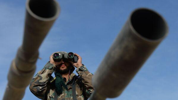 Observadores rusos informan de ocho violaciones de la tregua en Siria - Sputnik Mundo