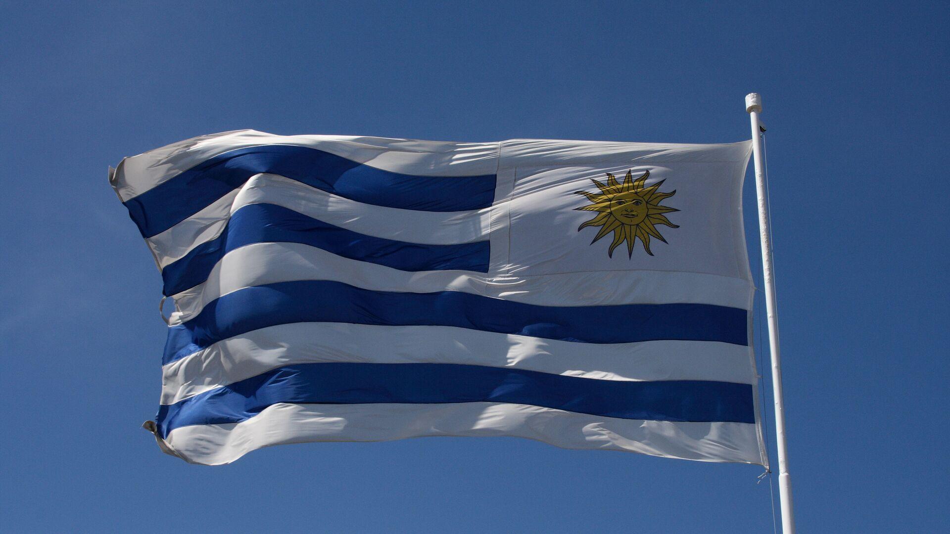 La bandera de Uruguay - Sputnik Mundo, 1920, 02.09.2021