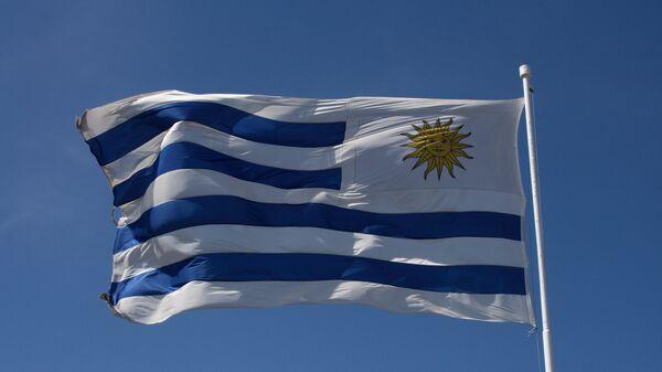 La bandera de Uruguay - Sputnik Mundo