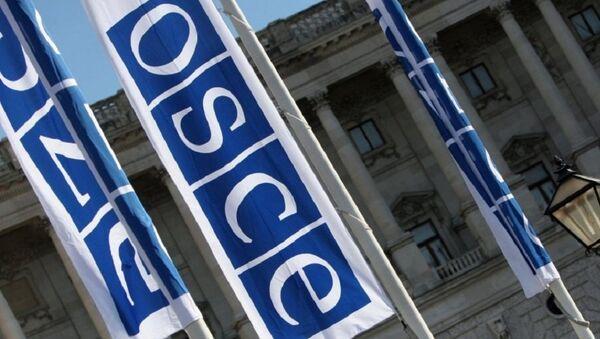 Флаги с логотипом ОБСЕ в Вене - Sputnik Mundo