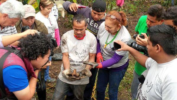 Familiares de desaparecidos encuentran restos humanos en Veracruz, México - Sputnik Mundo