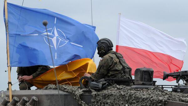 Soldado polaco - Sputnik Mundo