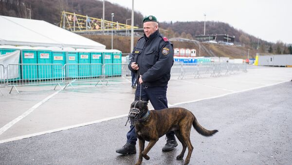 An Austrian police officer patrols with a dog at an refugee centre in Spielfeld at the Austrian-Slovenian border as Austria imposes a new daily migrant limit on February 19, 2016. - Sputnik Mundo