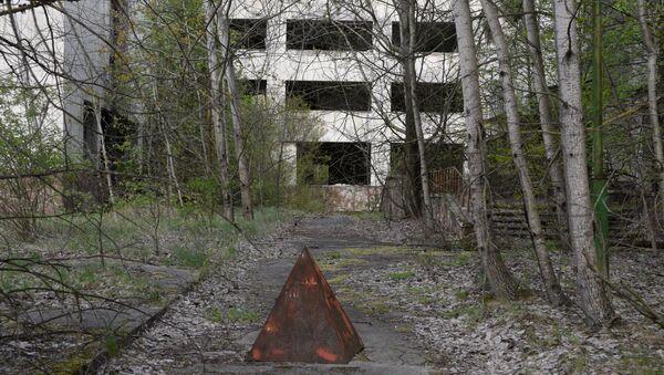 La zona de exclusión de la central nuclear de Chernóbil - Sputnik Mundo