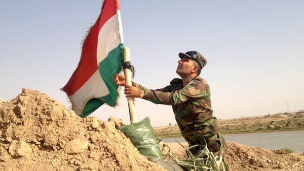 Bandera de los kurdos Peshmerga en Irak - Sputnik Mundo