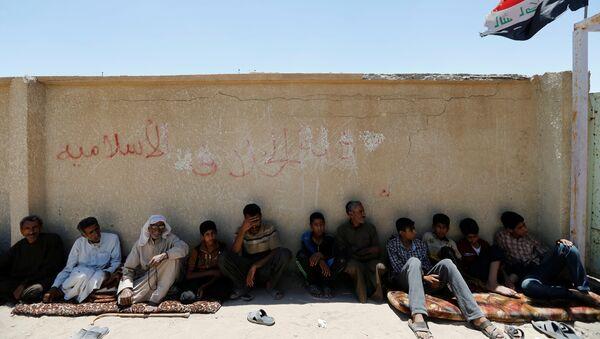 Los iraquíes que huyeron de Faluya - Sputnik Mundo
