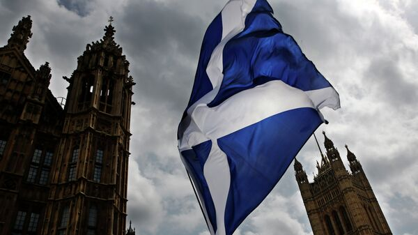 A member of public flies a giant Scottish Saltire flag outside the Houses of Parliament shortly before Scotland First Minister Nicola Sturgeon posed with newly-elected Scottish National Party (SNP) MPs during a photocall in London on May 11, 2015 - Sputnik Mundo