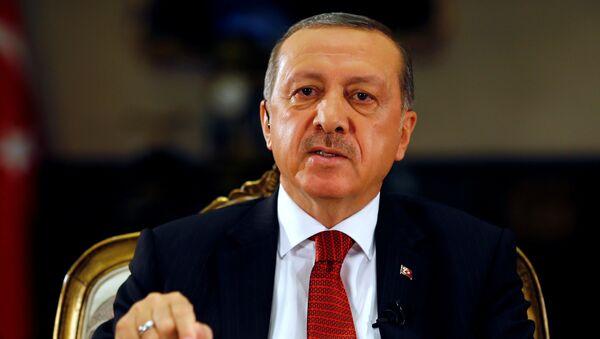 Turkish President Tayyip Erdogan attends an interview with Reuters at the Presidential Palace in Ankara, Turkey - Sputnik Mundo