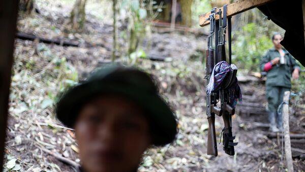 Combatientes de las FARC - Sputnik Mundo