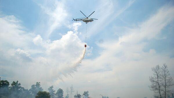 Incendios en Riau, Indonesia - Sputnik Mundo