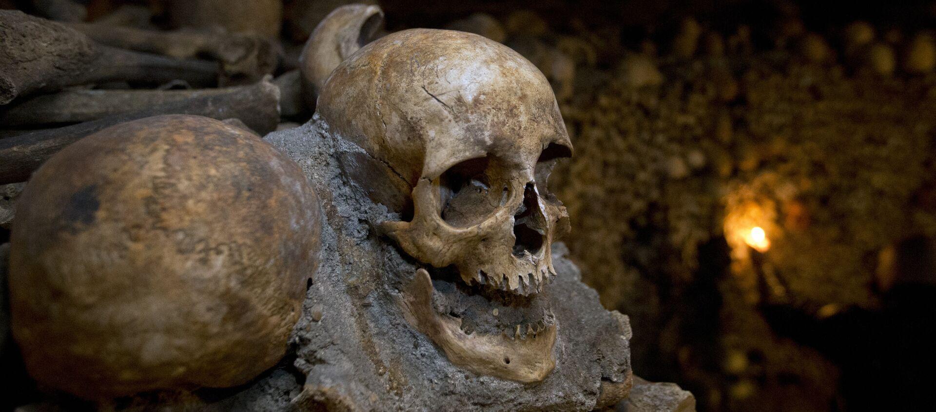 Huesos en una cueva (imagen referencial) - Sputnik Mundo, 1920, 23.03.2017
