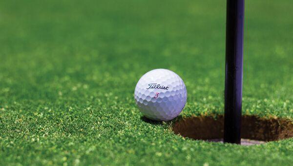 Pelota de golf - Sputnik Mundo