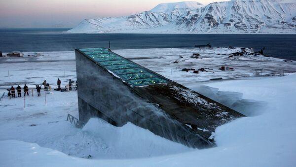 Banco Mundial de Semillas en la isla de Svalbard, Noruega - Sputnik Mundo
