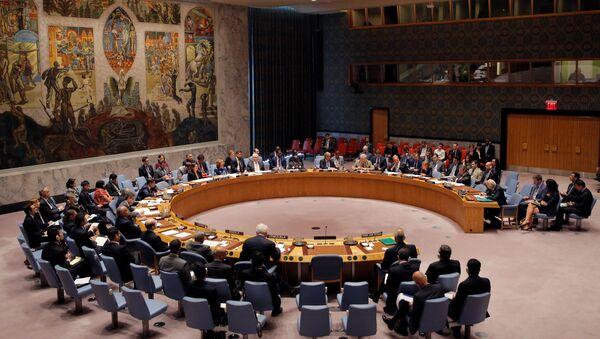 Reunión del Consejo de Seguridad de Naciones Unidas - Sputnik Mundo