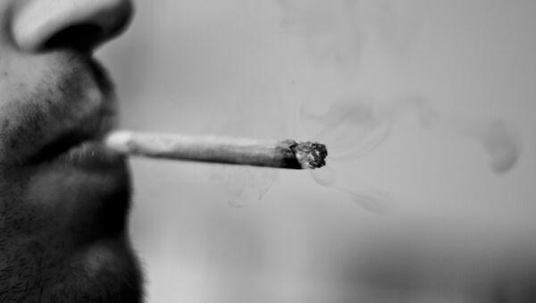 Marihuana - Sputnik Mundo