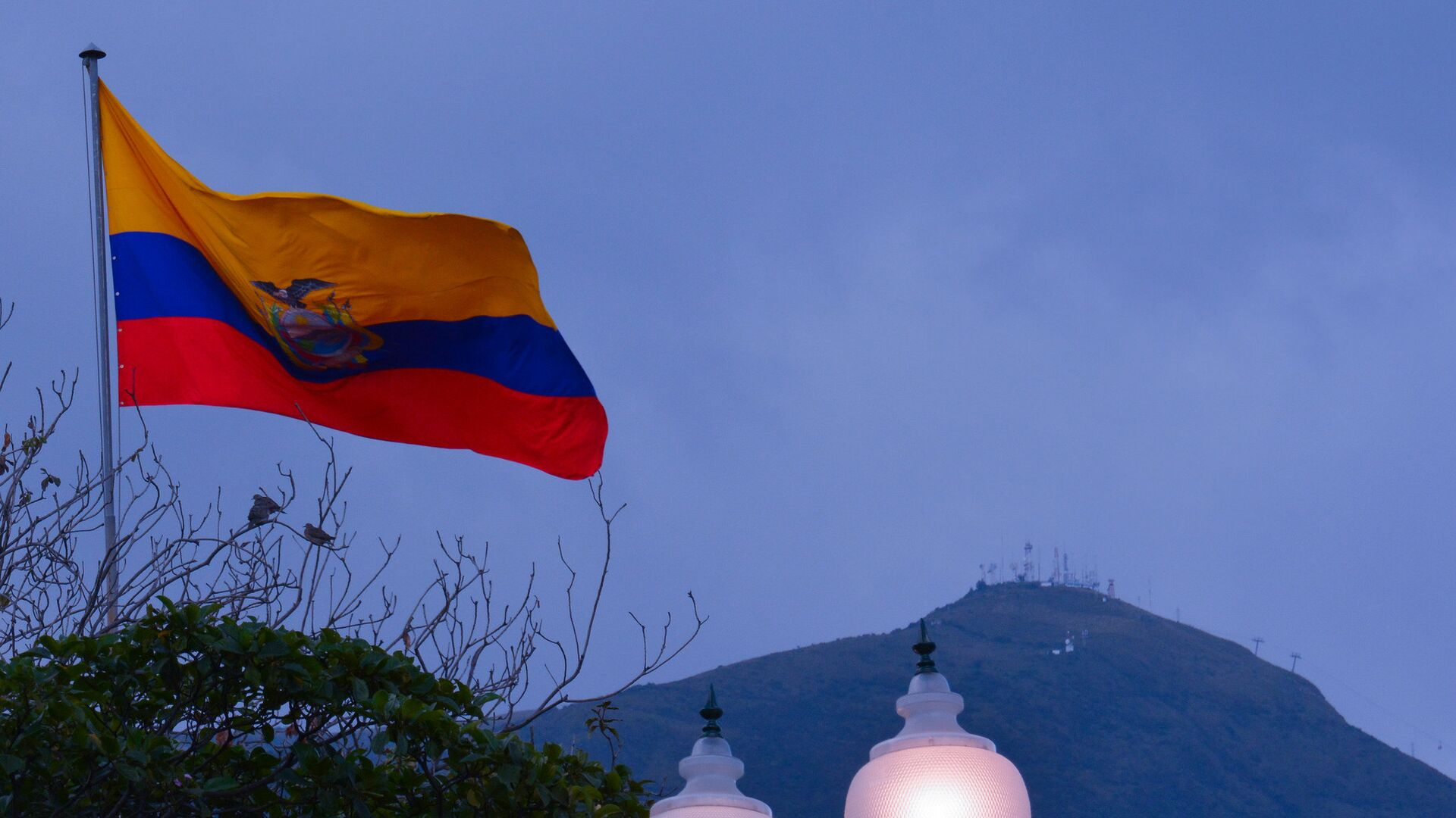 La bandera de Ecuador - Sputnik Mundo, 1920, 17.08.2021